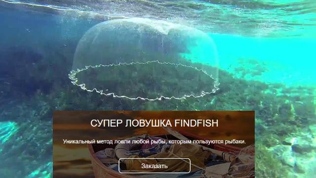 супер ловушка findfish отзовик